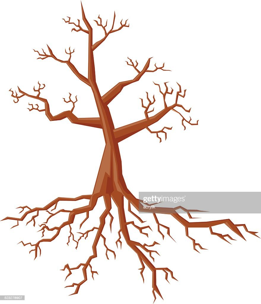 Tree showing the roots vector