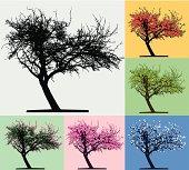 Tree silhouette, Four seasons