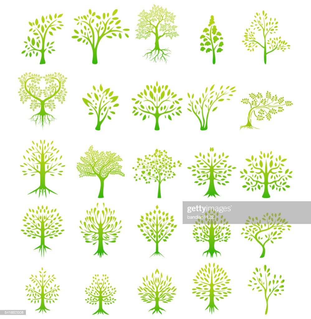 tree silhouette life background