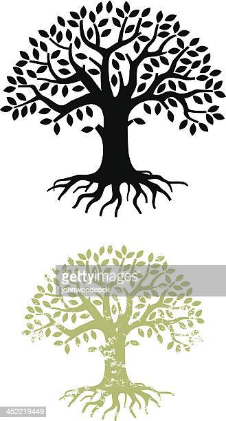 tree silhouette - root stock illustrations, clip art, cartoons, & icons