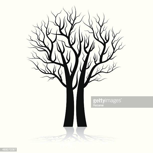 tree silhouette - bare tree stock illustrations