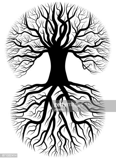 tree silhouette - ancestry stock illustrations, clip art, cartoons, & icons