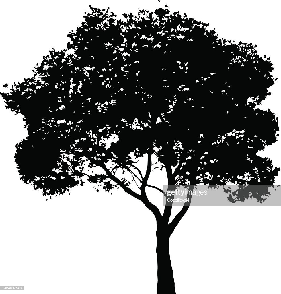Tree silhouette - vector illustration