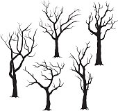 Tree Silhouettes- Illustration