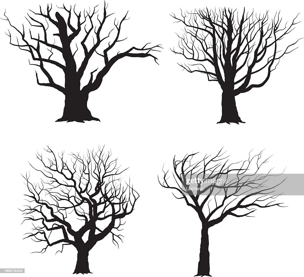 Tree Silhouettes- Illustration