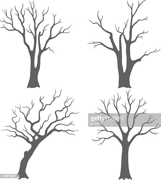 tree silhouettes - bare tree stock illustrations