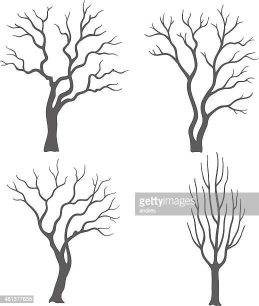tree silhouettes - tree trunk stock illustrations, clip art, cartoons, & icons