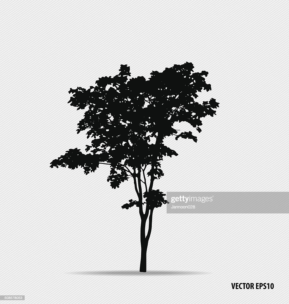 silhouettes d'arbres. illustration vectorielle. : Clipart vectoriel