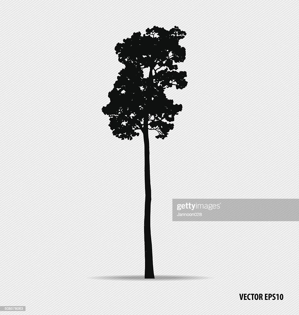 Tree silhouettes. Vector illustration. : Vektorgrafik