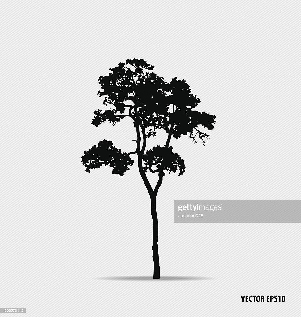 Silhouette albero. Illustrazione vettoriale. : Arte vettoriale