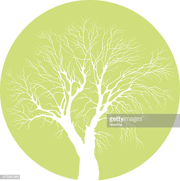 tree symbol - tree bark stock illustrations, clip art, cartoons, & icons
