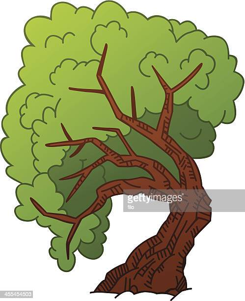 tree - ash stock illustrations, clip art, cartoons, & icons