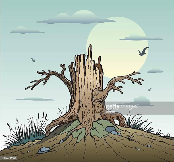tree - tree trunk stock illustrations, clip art, cartoons, & icons