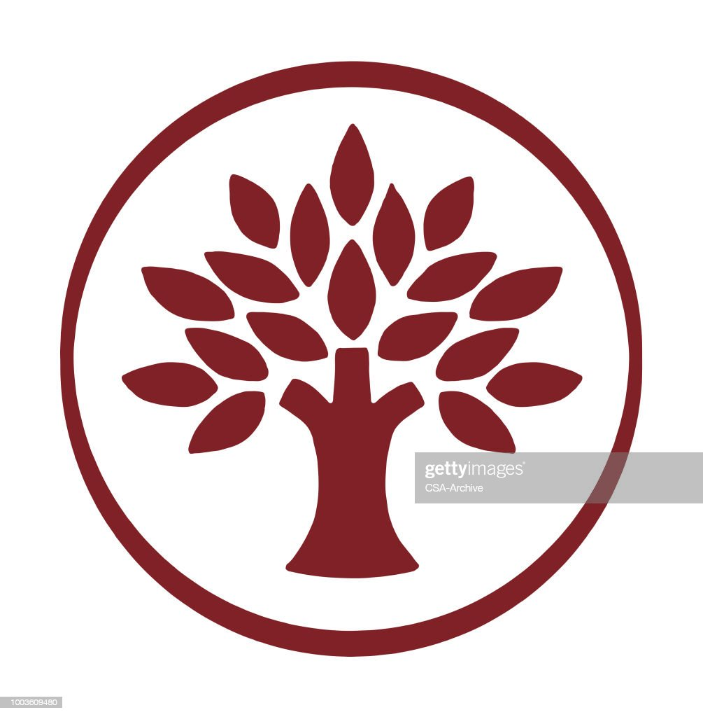 Tree with Leaves : stock illustration