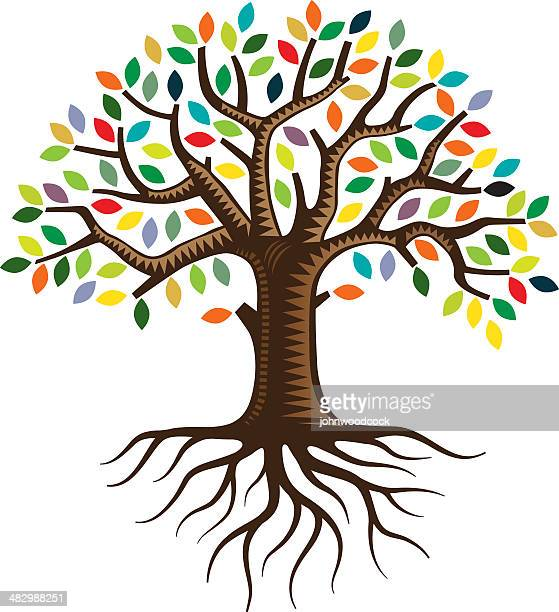 tree with roots and brightly colored leaves - root stock illustrations, clip art, cartoons, & icons