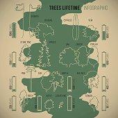 Treeinfographic