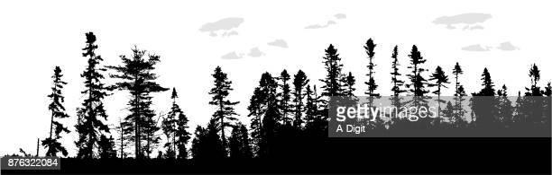 treeline canada - wilderness stock illustrations