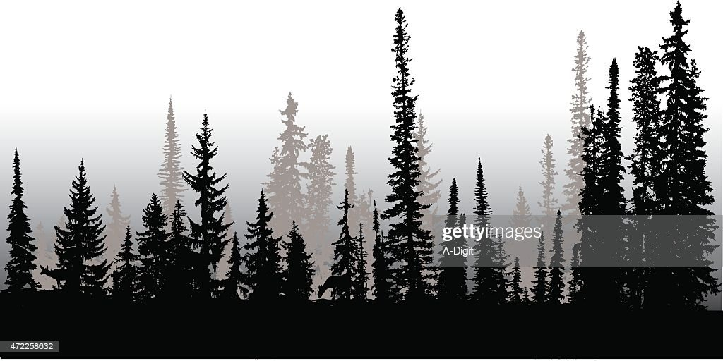 Line Drawing Tree Tattoo : Treeline up north vector art getty images