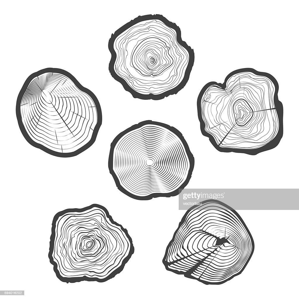 Tree-rings vector set