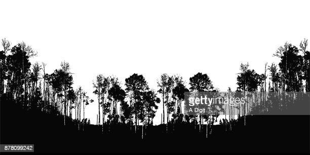 trees and valley - deciduous tree stock illustrations, clip art, cartoons, & icons