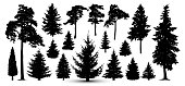 Trees forest set, vector. Silhouette of pine, spruce