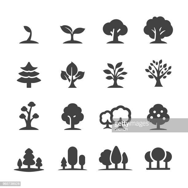 trees icons - acme series - tree stock illustrations