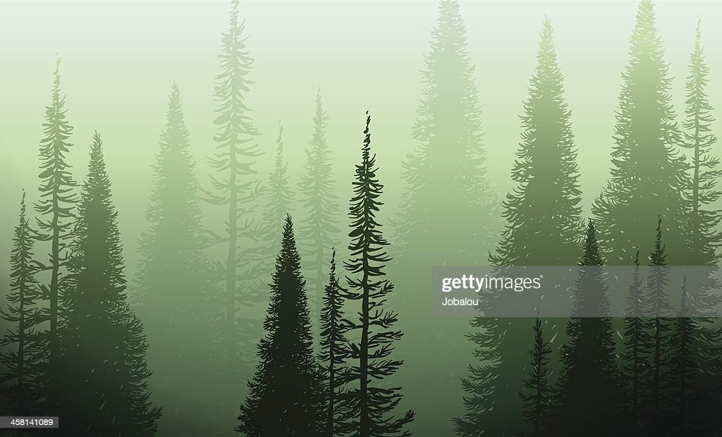 Trees In The Green Mist : stock illustration