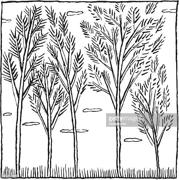 trees in the wind - aspen tree stock illustrations, clip art, cartoons, & icons