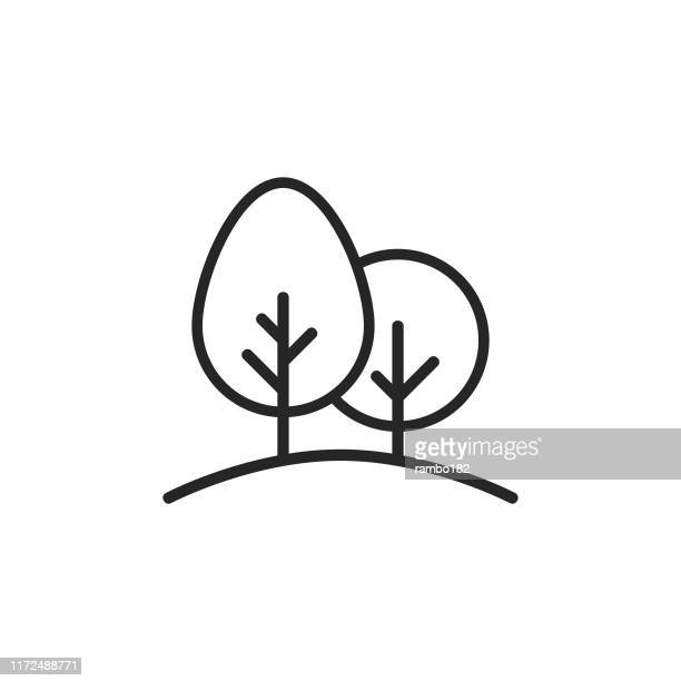 trees, nature line icon. editable stroke. pixel perfect. for mobile and web. - tree stock illustrations