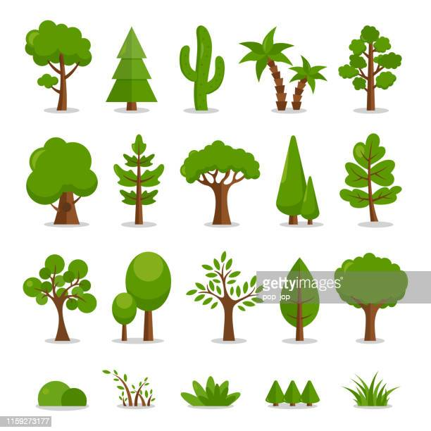 trees set - vector cartoon illustration - tree stock illustrations