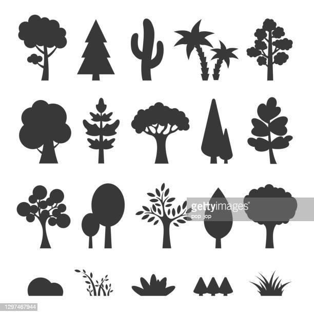 illustrazioni stock, clip art, cartoni animati e icone di tendenza di set alberi - illustrazione di cartoni animati vettoriali - albero