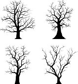 Trees silhouettes set collection