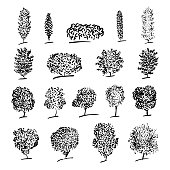 Trees sketch set, engraved style, hand drawn