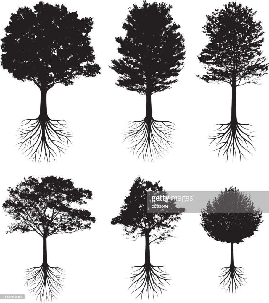 Trees with roots silhouettes black and white vector icon set : stock illustration