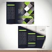 Tri Folder Brochure - Leaflet mock up