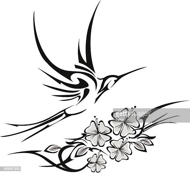 illustrations, cliparts, dessins animés et icônes de colibri de tatouage tribal et hibiscus - hibiscus