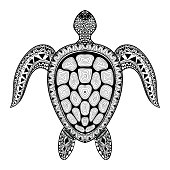 Tribal stylized turtle. Hand Drawn aquatic doodle vect