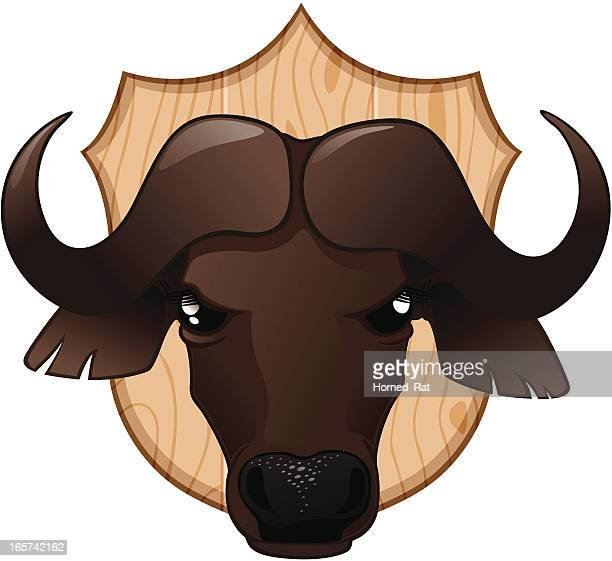trofe - cape buffalo - african buffalo stock illustrations, clip art, cartoons, & icons