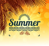 drawn vector summer tropic sunthis file