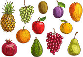 Tropical and exotic fruits isolated icons
