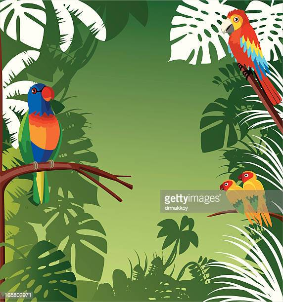 tropical background - costa rica stock illustrations, clip art, cartoons, & icons