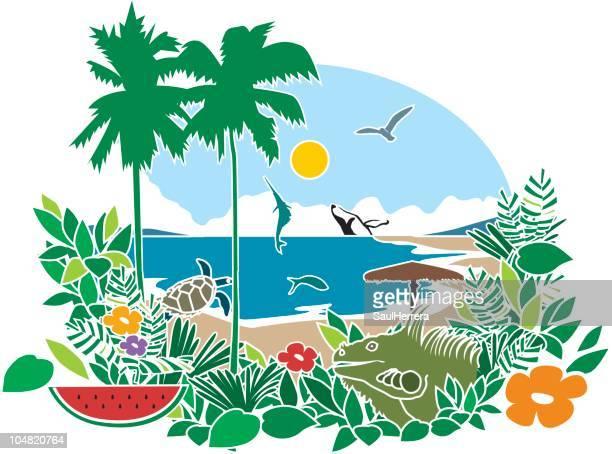 ilustraciones, imágenes clip art, dibujos animados e iconos de stock de bahia & playa tropical - iguana