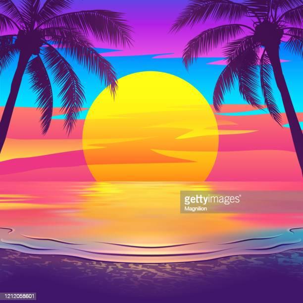 ilustraciones, imágenes clip art, dibujos animados e iconos de stock de playa tropical al atardecer con palmeras - puesta de sol