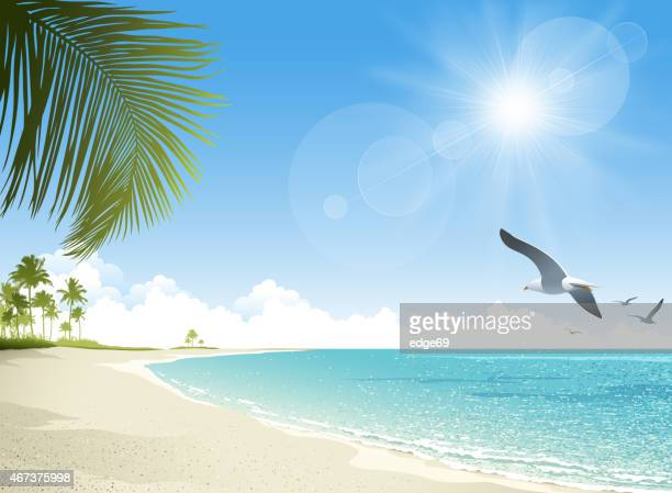 tropical beach background - cloud sky stock illustrations