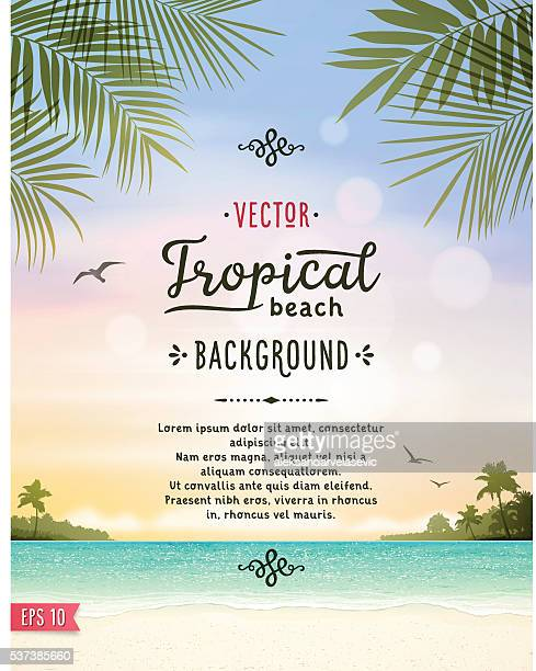 tropical beach background - holiday travel stock illustrations, clip art, cartoons, & icons