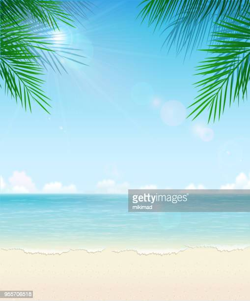 tropical beach background - vertical stock illustrations
