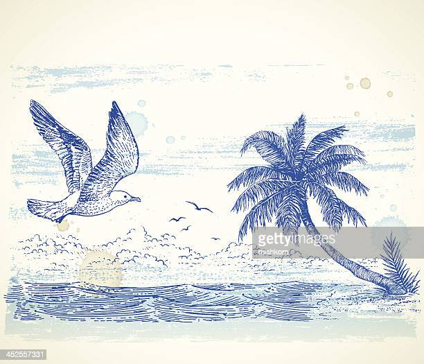 a tropical beach drawing in blue ink - coconut leaf stock illustrations, clip art, cartoons, & icons