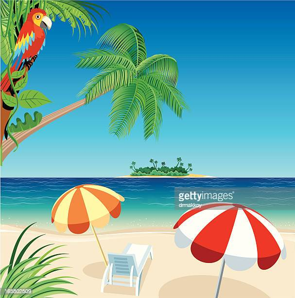 Deserted Island Beach: 60 Top Desert Island Stock Illustrations, Clip Art