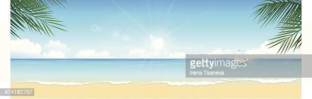 ilustrações, clipart, desenhos animados e ícones de praia tropical - panorâmica