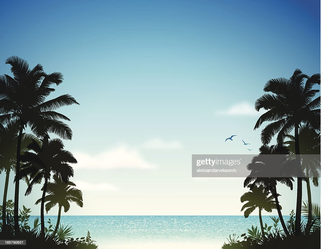 Tropical Beach with Palm Trees : stock illustration